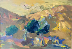 Landscape acrylic on canvas 70x50cm