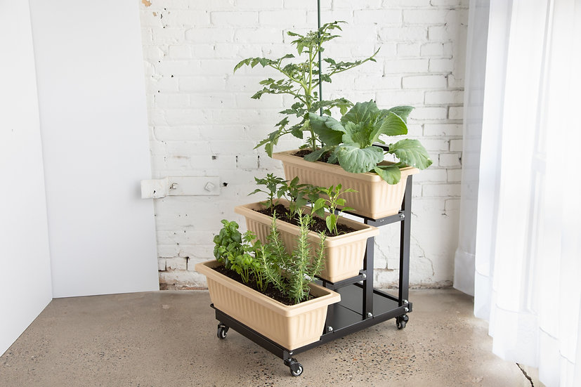 3 Tier Rolling Planter