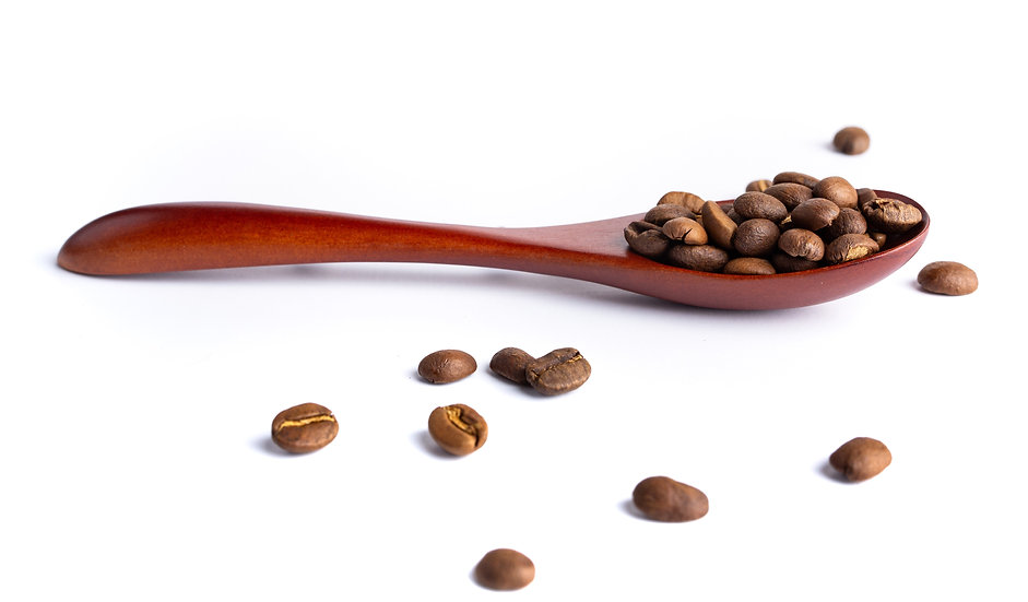 Acacia Coffee Spoon