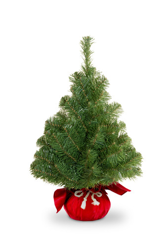 noble-green-spruce-assortment-nb1-20rd