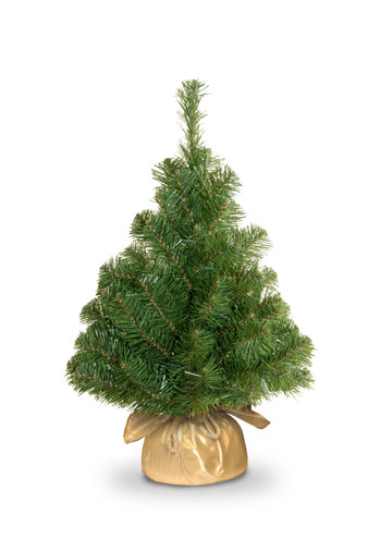 noble-green-spruce-assortment-nb1-20gd