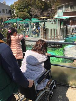 動物園で大興奮