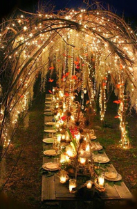 string lights hung from tree branches