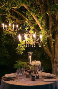 outdoor chandeliers hung from trees