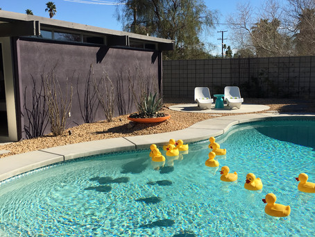 Inspiration from Modernism Week Palm Springs