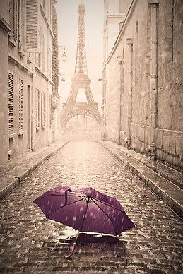 Purple Umbrella Paris.jpg