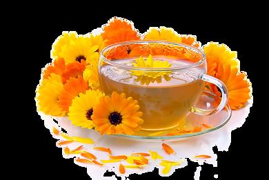 Calendula Marigold Tea Healthy Detox Wellbeing