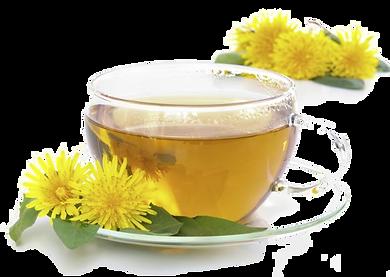 Dandelion Tea Detox Health