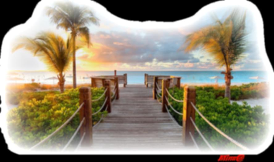 Nature Ocean Boardwalk.png
