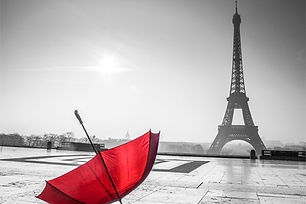 paris eiffel towers black and white wall