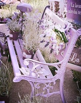 Journaling Writing Purple_Lavender Bench