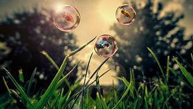 Nature Bubbles Grass Umbrellas Wallpaper