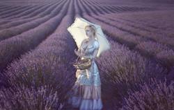 Woman Purple Lavender Field Umbrella Banner
