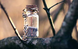 Banner Love Bottle_edited