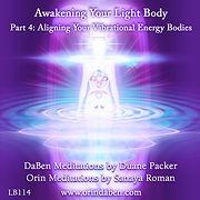 Volum 4 AYLB Aligning Your Vibrational E