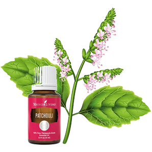 Patchouli Essential Oil OKib