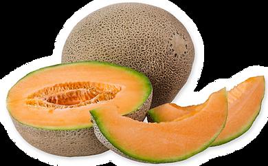 melon-cantaloupejpg
