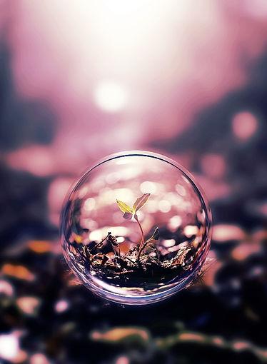 water-drop-beautiful_edited.jpg