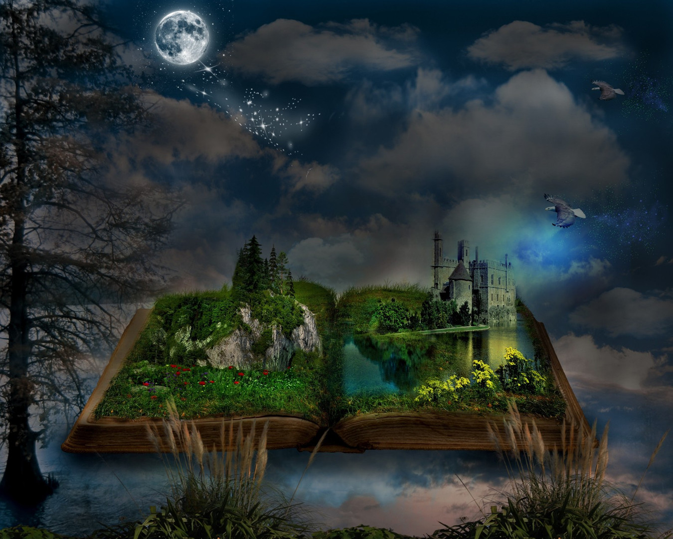 Earth Story Book Wallpaper.jpg