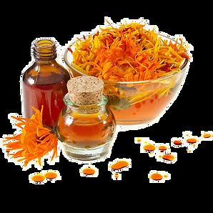 Calendula Essential oil 2