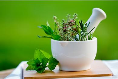 Detox Health Herbs