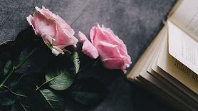 Reading Book Roses Pink Wallpaper.jpg