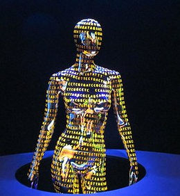 Human Genetics.jpg