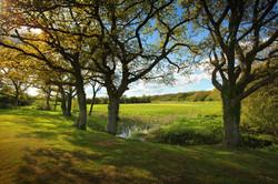 6th Mid Sussex Golf Club