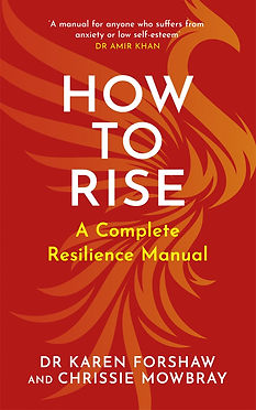 HOW TO RISE_cover (002).jpg