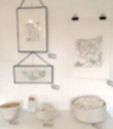 Art Nest images.jpg