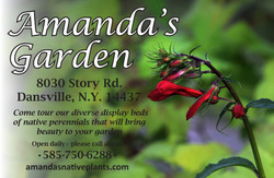 042517 upstate amandas