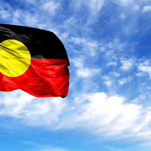 NSW Indigenous program review