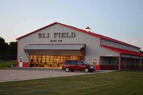 Eli Field