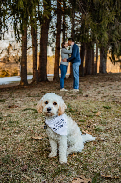 Katie & Adnan Winter Engagement at Maudslay State Park