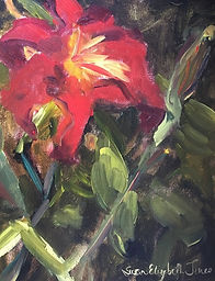 A Scarlett Lily by susan elizabeth jones