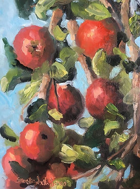 Yankee Apples by susan elizabeth jones.j