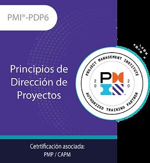 PMI®-PDP6   Principios de Dirección de Proyectos (21PDUs)
