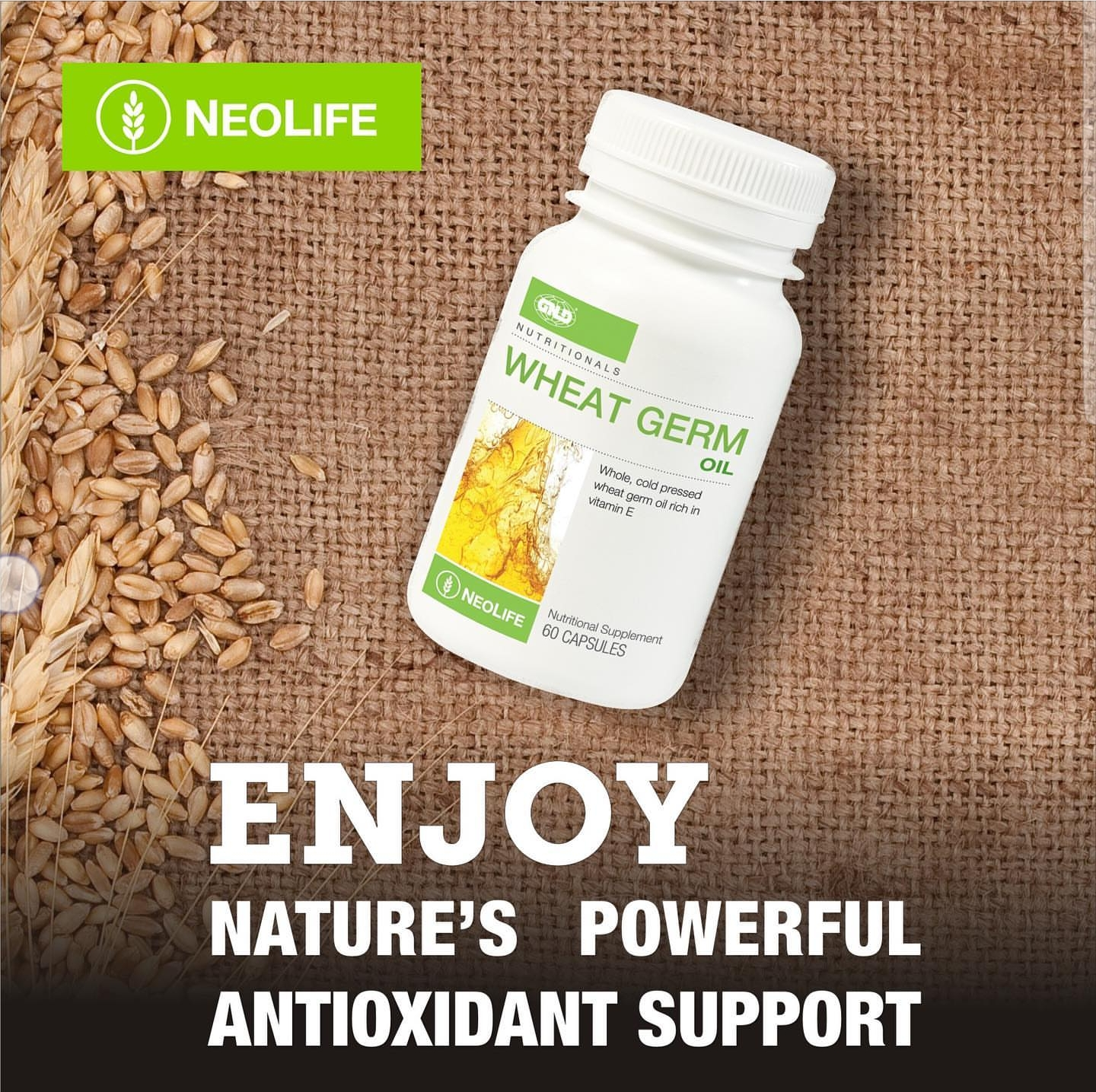 Neolife Wheat Germ Oil