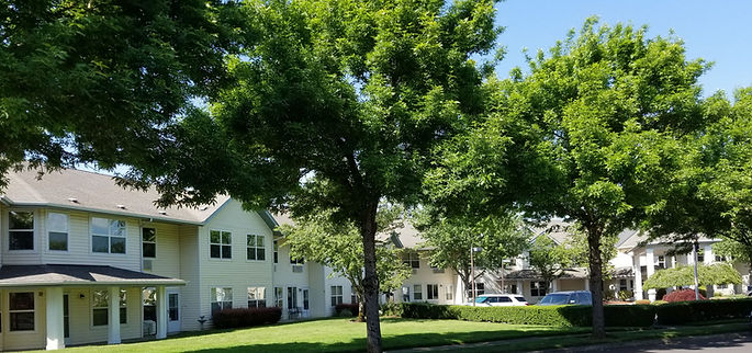 The buildings of Assisted Living at Summerplace surrounded by trees