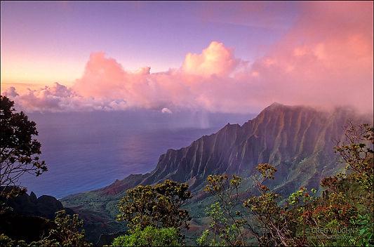 kauai pic.jpg