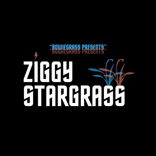 ZiggyStarGrass.png