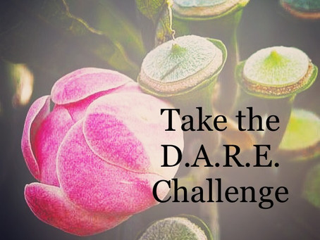 Take the DARE Challenge