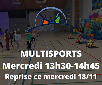 MULTISPORTS Mercredi 13h30-14h45 (1).png