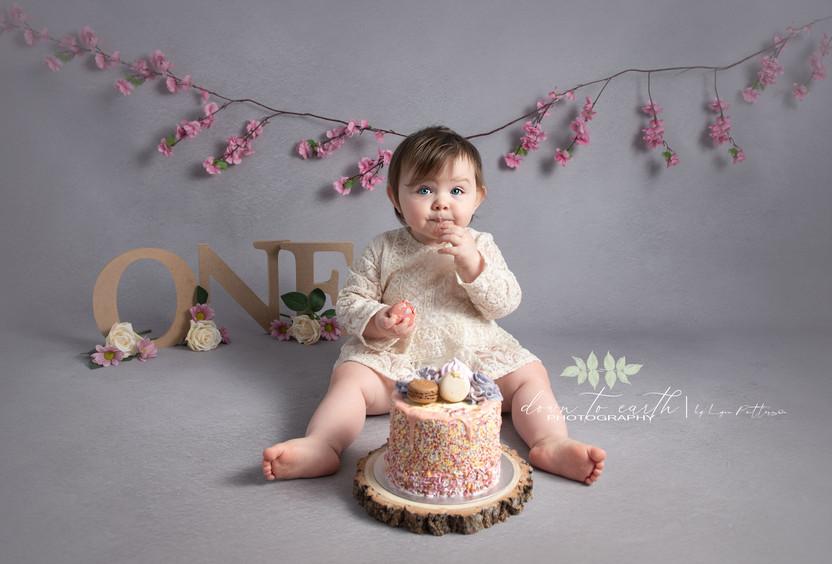 Georgie-Cake-1-Web.jpg