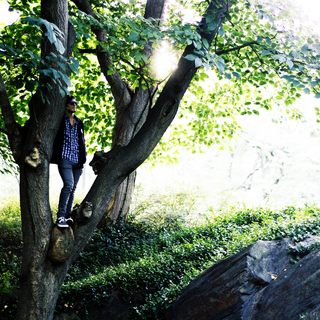 Central Park Model: Dorian P.