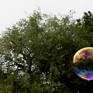 Central Park: Bubbles