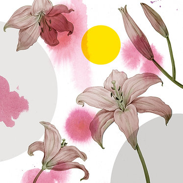 Lilies | Greeting cards | 5 pcs