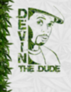 DevinTheDude_BlankAdmat2020.png