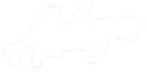 ashya-white-logo.png