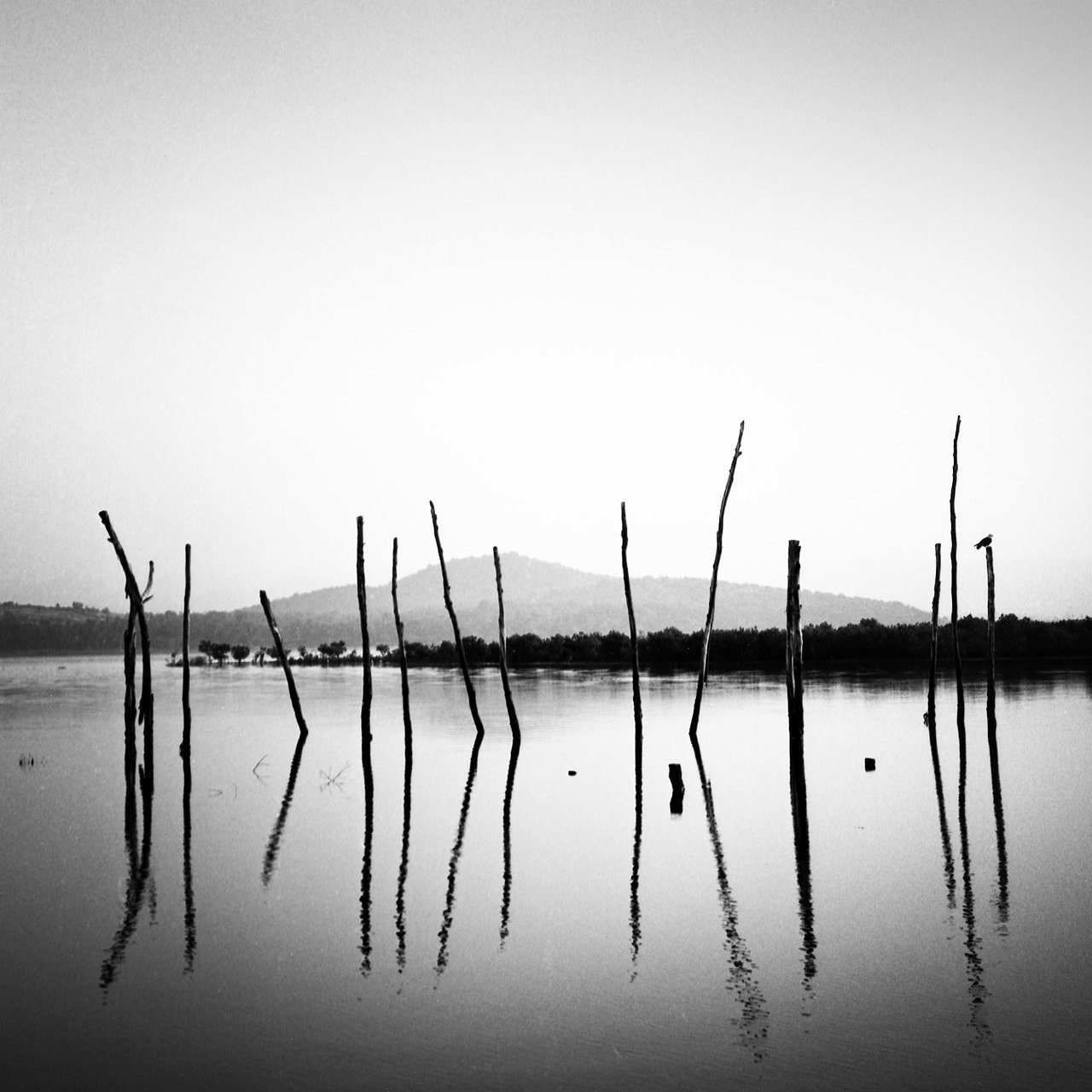 14 poles, Gokarna